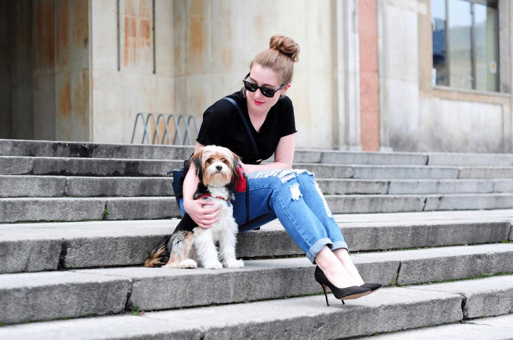 7 rzeczy, których możesz nauczyć się od… swojego psa!