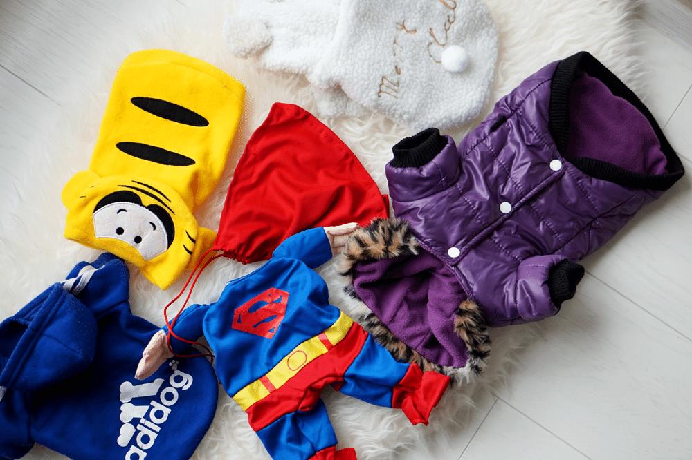kolekcja kurtek tosi zimowe ubranka dla psa