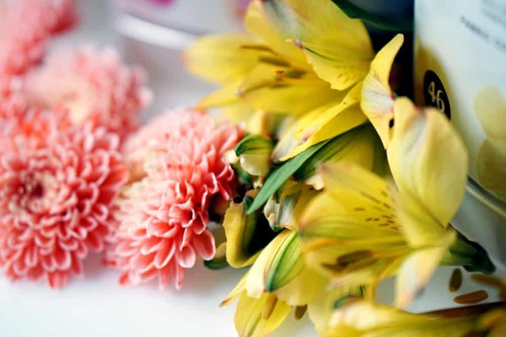 Lenor Inspired by Nature- zapachy zainspirowane naturą