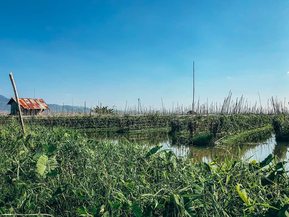 plan zwiedzania Inle ogród